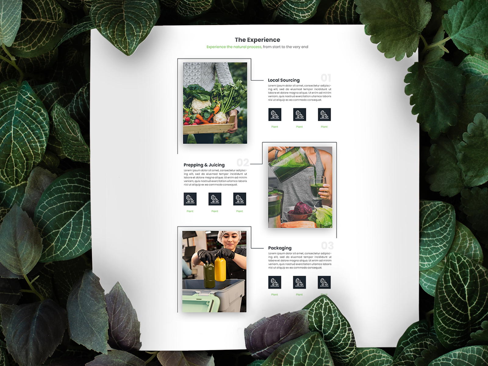 Green Juice Process Page